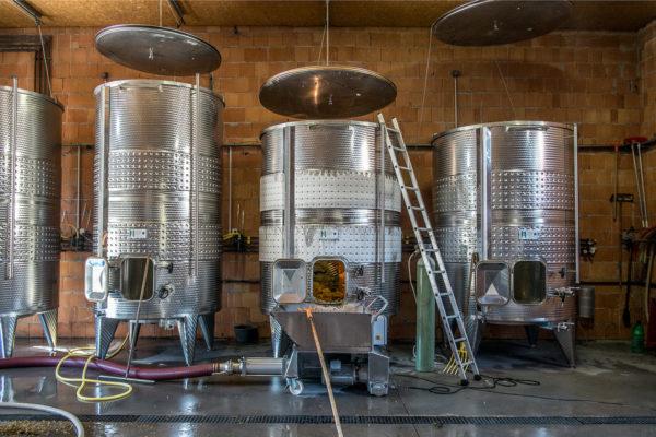 domaine du maupas - jérôme cayol - la vinification 4